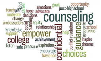School Counseling image